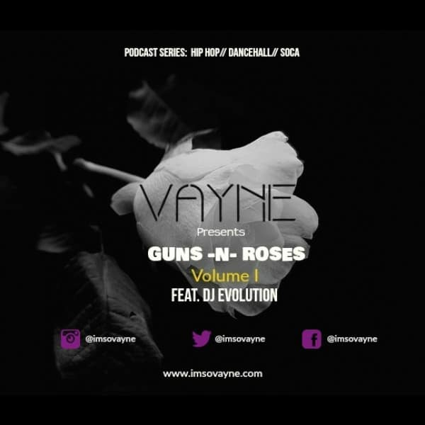 Vayne - Guns N Roses Vol 1 - Mixtape ft Dj Evolution
