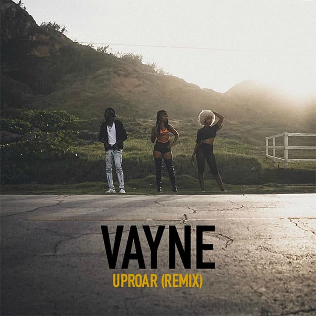 Vayne - UPROAR remix