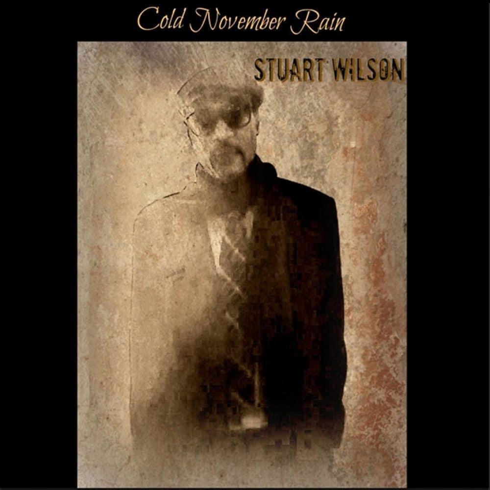 Stuart Wilson - Cold November Rain