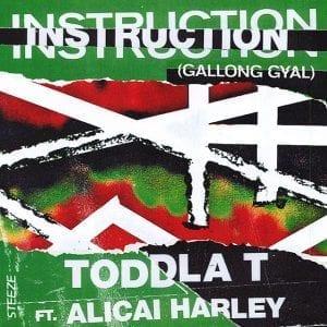 Toddla T - Instruction (Gallong Gyal) feat. Alicai Harley