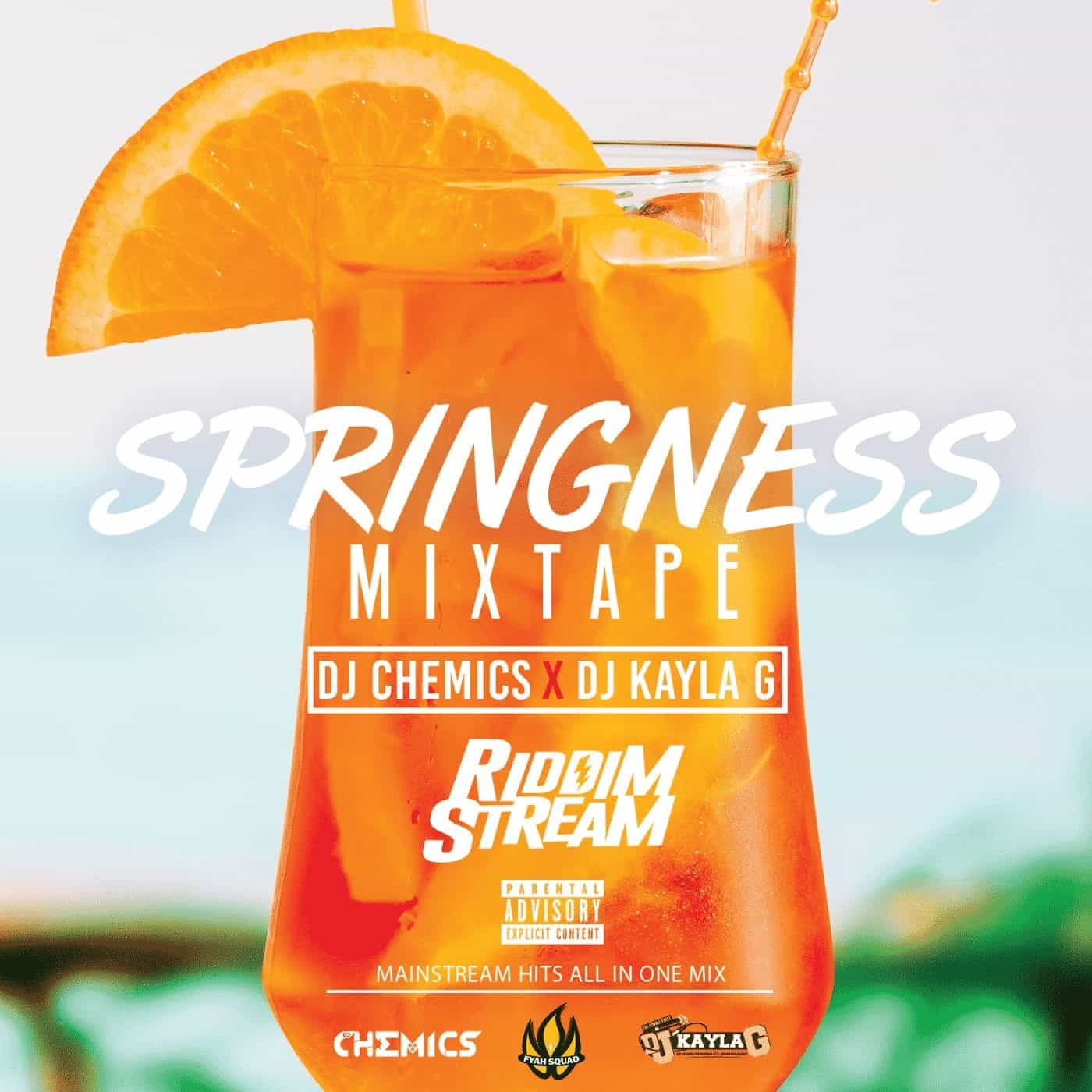 DJ Chemics x DJ Kayla G - Springness (2019 Mainstream Mixtape)
