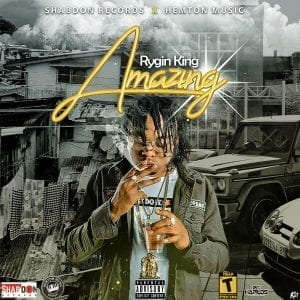 Rygin King - Amazing - Shabdon Records - Hemton Music Group