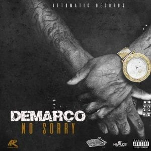 Demarco - No Sorry - Attomatic Records / Dansky Records