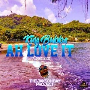 "King Bubba FM - Ah love it ""Ting Nice"" - Jakson Bay Project"