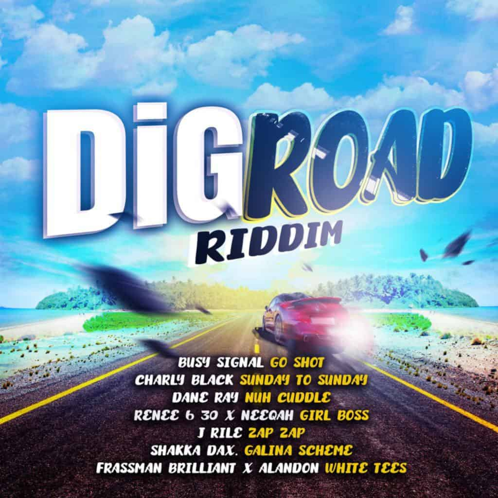 Dig Road Riddim - Various Artists