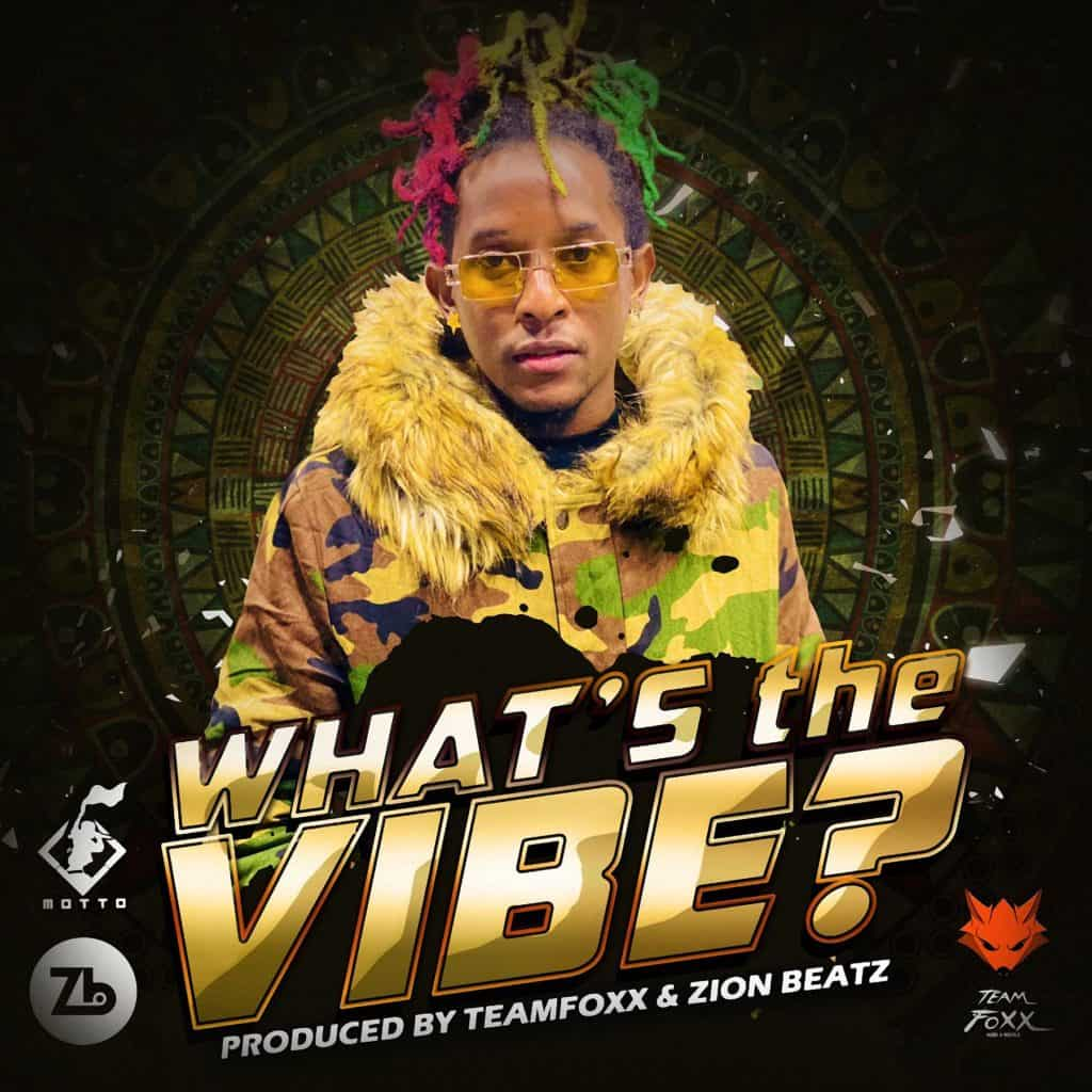 Motto - What's the Vibe?