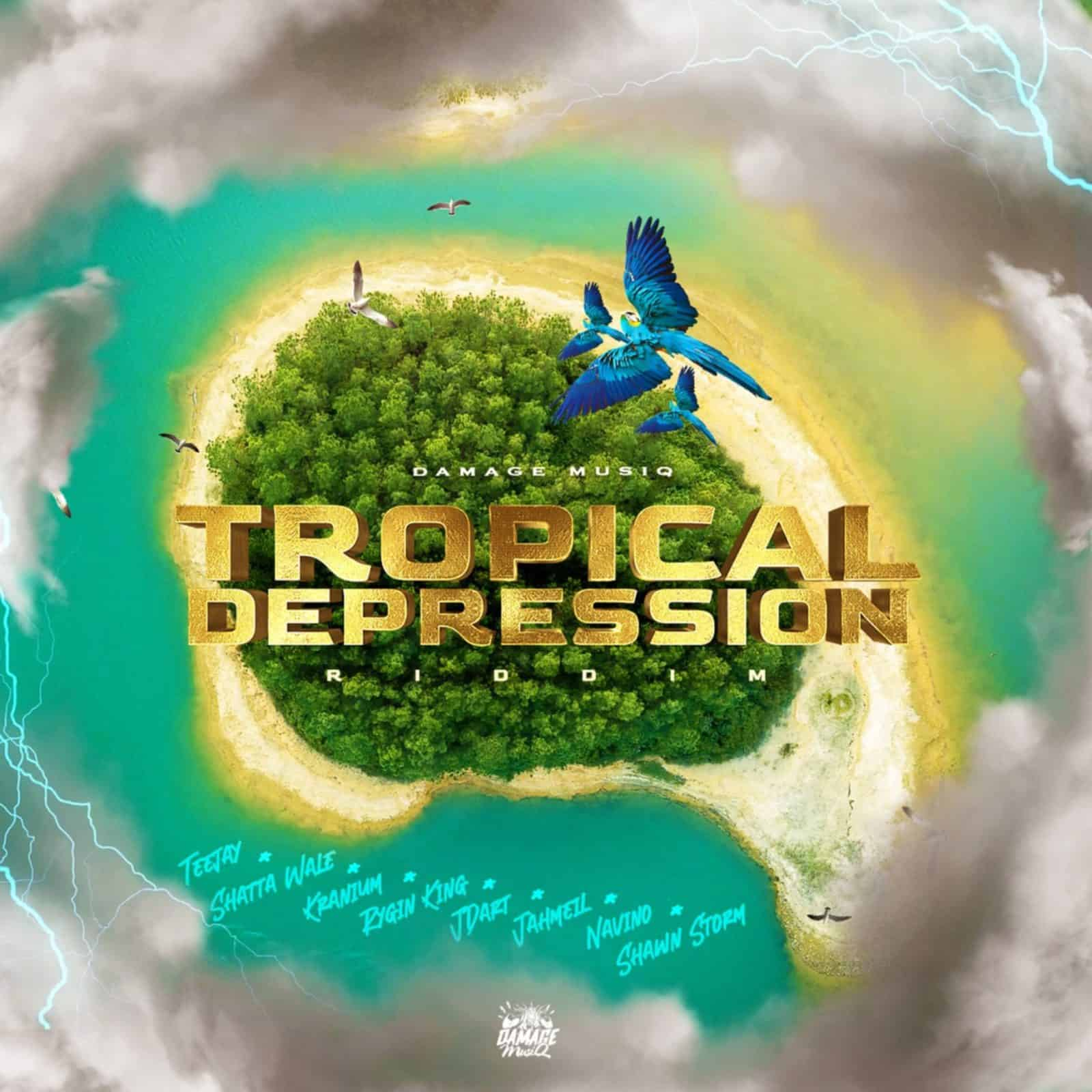 Tropical Depression Riddim - Damage Musiq
