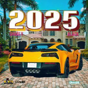 Charly Black - 2025 - Minto Play Da Riddim