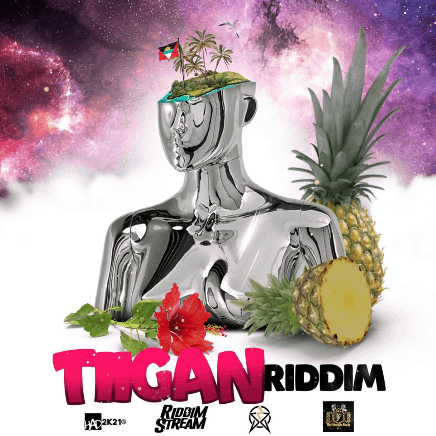 Tiigan Riddim - Various Artists