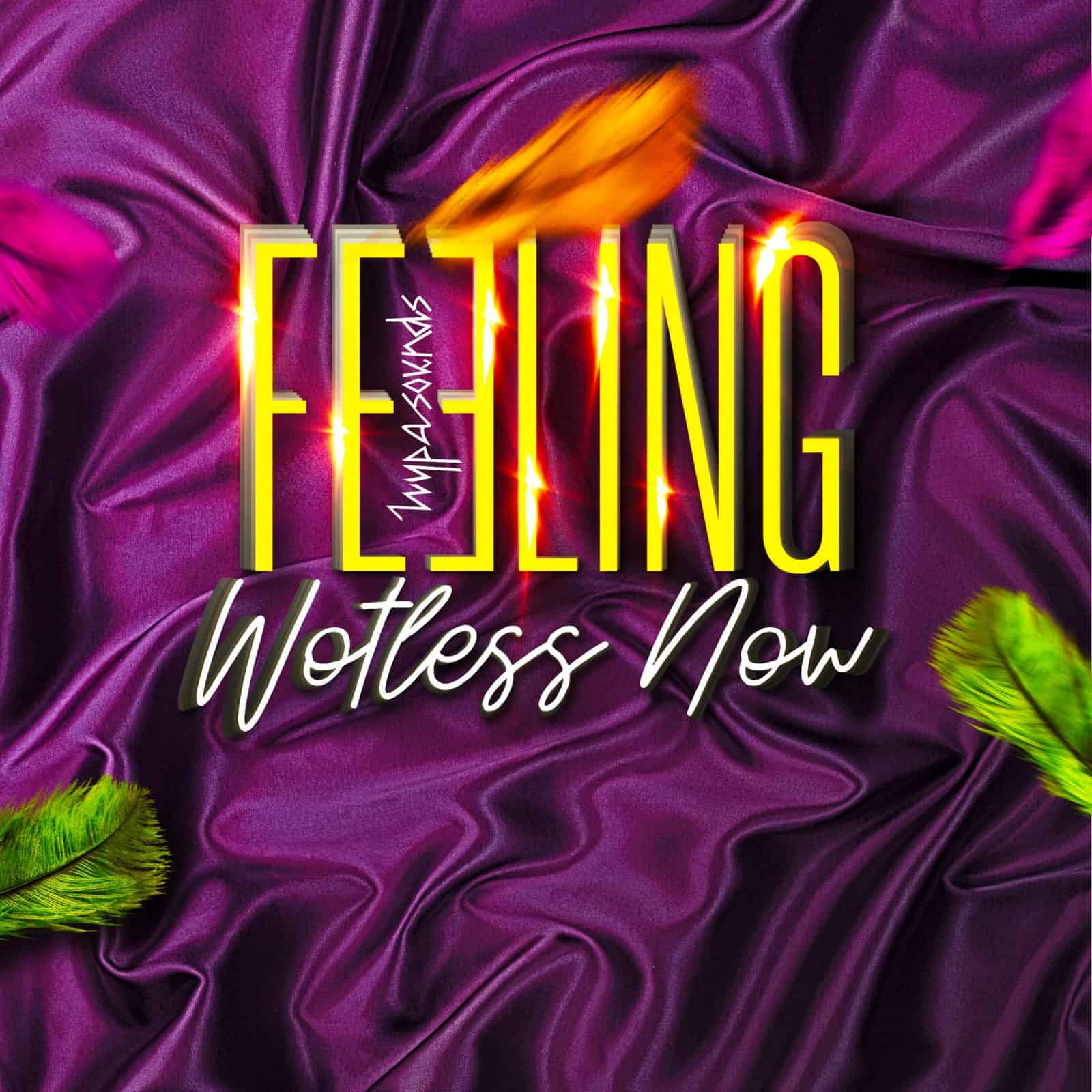 Hypasounds - Feeling Wotless Now