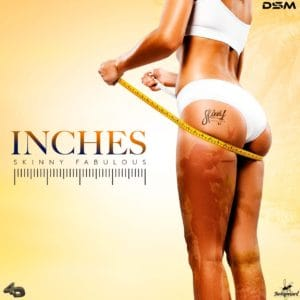 Skinny Fabulous - Inches